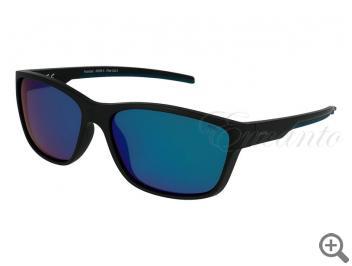 Поляризационные очки INVU A2005A 105355 фото