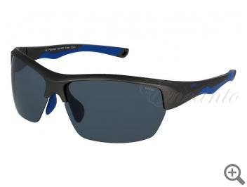 Поляризационные очки INVU A2010C 105364 фото