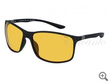 Поляризационные очки INVU A2913D 105002 фото