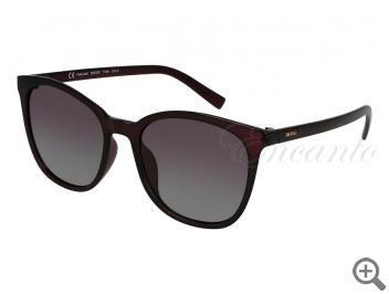 Поляризационные очки INVU B2033C 105577 фото
