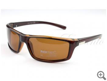 Поляризационные очки Polar Eagle PE242-C3 102445 фото