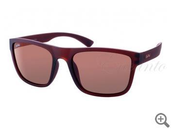Поляризационные очки StyleMark L2480B 105188 фото